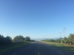 The Road Ahead. Day 181. Nearly to Ciudad Victoria, the capital of Tamaulipas. Gonna spent a full day there tomorrow to experience the city and give Savannah as much sleep as she wants. Gonna be a great morning walking towards the Sierra Madre Oriental mo