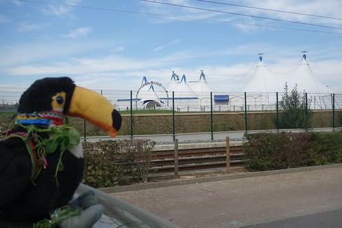 Un cirque s'est établi juste à côté de l'école !