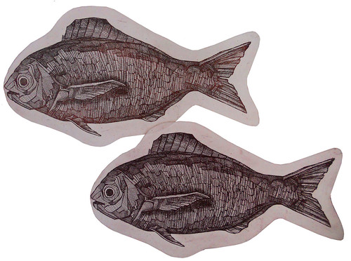 Pesci, acquaforte, 2013