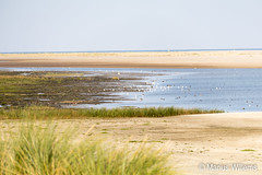 """Ameland • <a style=""""font-size:0.8em;"""" href=""""http://www.flickr.com/photos/139061502@N06/30548798946/"""" target=""""_blank"""">View on Flickr</a>"""