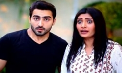 Bewaqofian Episode 56 Full by Ary Digital Aired on 26th November 2016