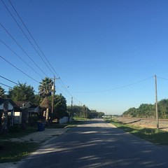 The Road Ahead. Day 150. Old Richmond Road in Rosenberg, TX. Gorgeous day, only 60 right now, just gotta get Savannah trained. #TheWorldWalk #travel #twwphotos