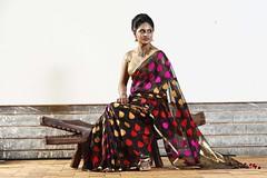 South Actress Deepika Das Traditional Photos Set-1 (12)