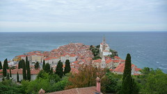 """Piran, Slovenia • <a style=""""font-size:0.8em;"""" href=""""http://www.flickr.com/photos/39052554@N00/21929268179/"""" target=""""_blank"""">View on Flickr</a>"""