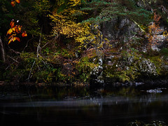 """A splash of Autumn, River Findhorn II • <a style=""""font-size:0.8em;"""" href=""""http://www.flickr.com/photos/26440756@N06/30034766703/"""" target=""""_blank"""">View on Flickr</a>"""