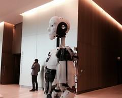 InMoov Robot Standing