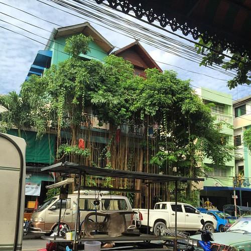 I <3 my #ShantiLodge   @ #Bangkok #Thailand  #thailoup #traveloup
