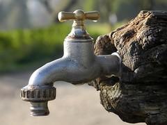"""Der Wasserhahn. Die Wasserhähne. • <a style=""""font-size:0.8em;"""" href=""""http://www.flickr.com/photos/42554185@N00/22649278019/"""" target=""""_blank"""">View on Flickr</a>"""