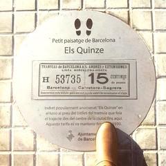 #elsquinze