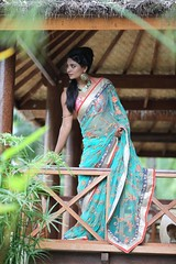 South Actress Deepika Das Traditional Photos Set-1 (27)
