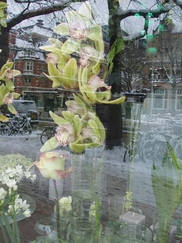 201012190075_Amsterdam-florist-reflections