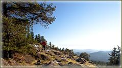 Mt. Work, west ridge