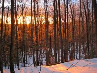 Berkshire County late winter
