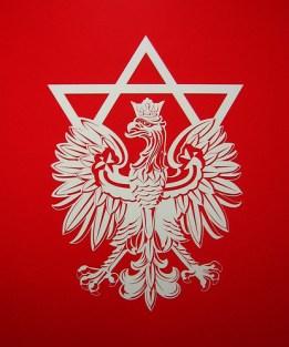 yael bartana - 'jewish renaissance movement in poland logo' @ new museum