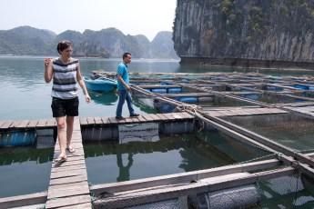 Besuch Pangasius Fischzucht 2