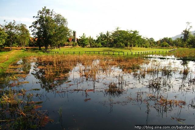 BKK_Angkor 1085