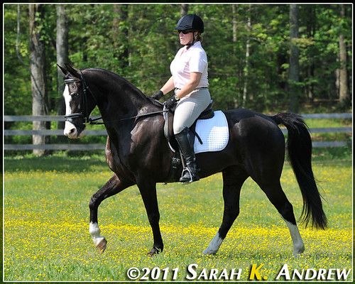 Kat and Chip, her Tennesee Walking Horse