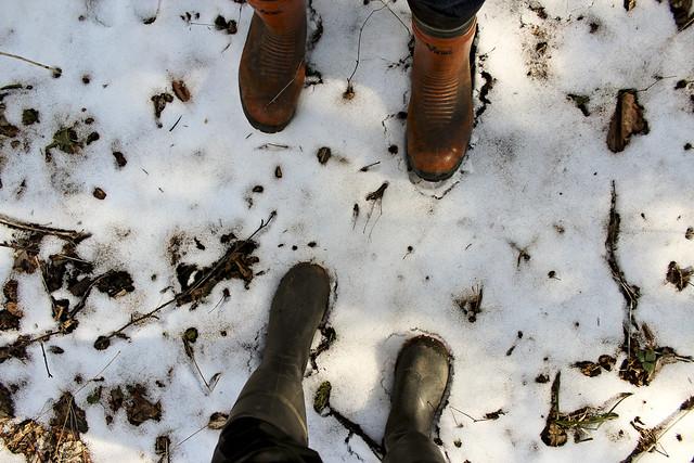 leftover snow