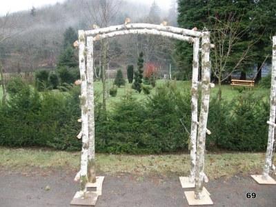 Narrow Birch Arch