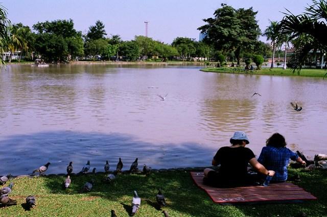 有些人會在湖邊野餐,鴿子也來湊熱鬧