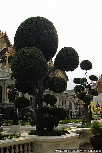 BKK_Angkor 217