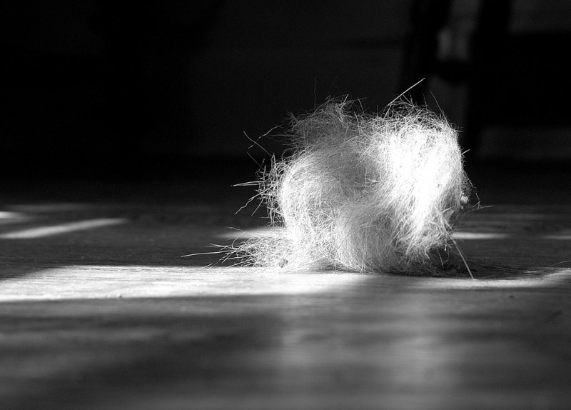 Week 12 - Dust Bunny Large Enough To Have a Name