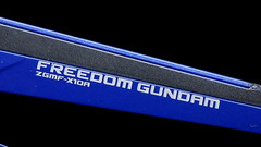 Metal Build Freedom Review 2012 Gundam PH (108)