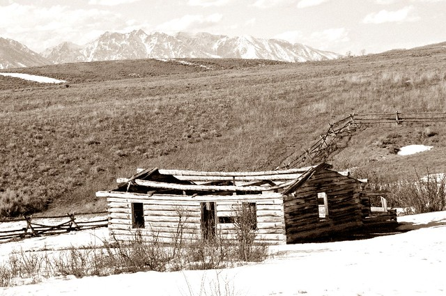 The Shane Cabin