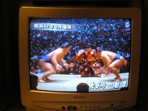 Sumo on TV