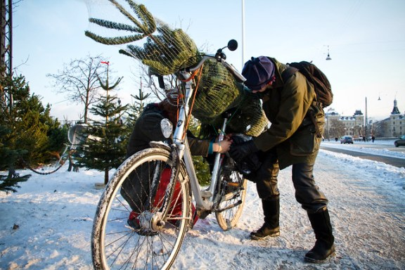 Christmas Tree Bicycle 03