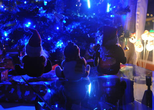 Christmas in Blue - 無料写真検索fotoq