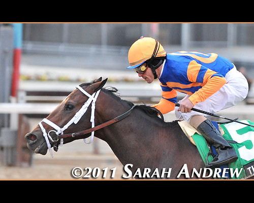 Stay Thirsty and Ramon Dominguez win the Grade III Gotham Stakes at Aqueduct