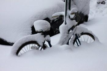 Snowbound bike