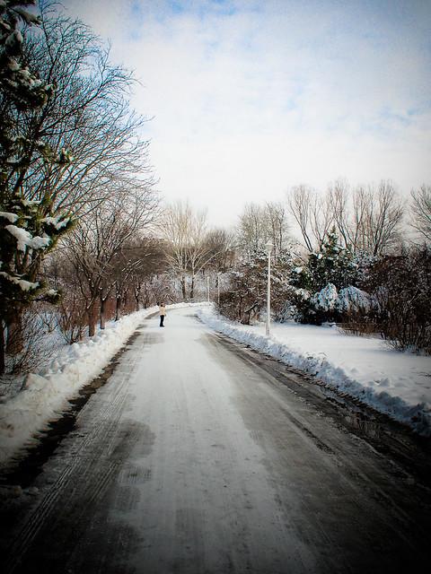 Iarnă prin Poli