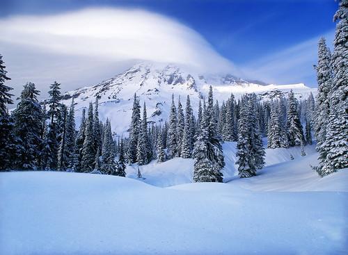 Mt. Rainier Winter Wonderland