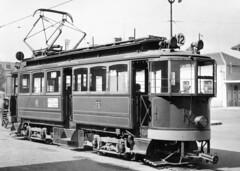 Trams de Genève (Suisse et France)