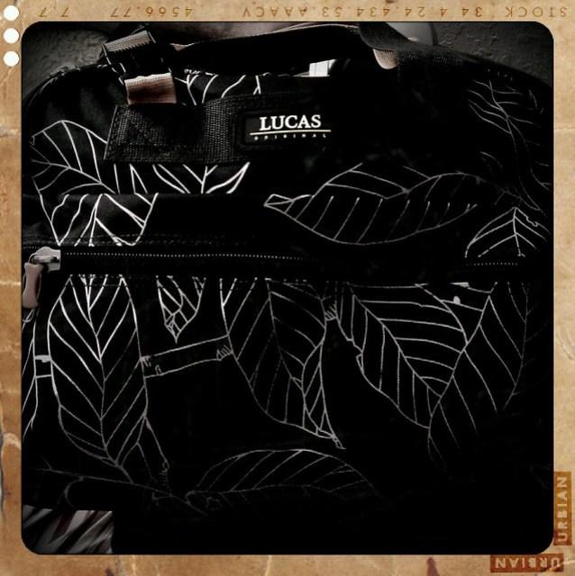 Lucas Leaf carryon bag