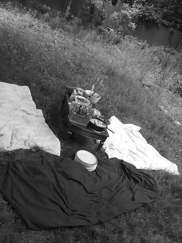 Picnic in (fake) b&w