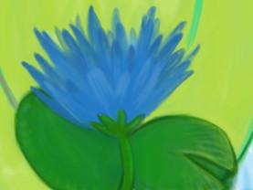 bluelilydetail