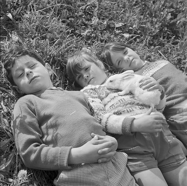 Llangefni children enjoying the sun with their pet rabbit
