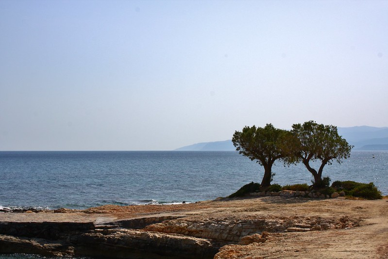 Sifting Through Blog-Crete