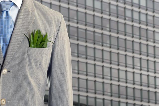 Green Economy resized