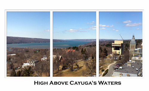 High Above Cayuga's Waters
