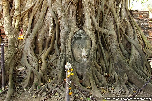 BKK_Angkor 1507