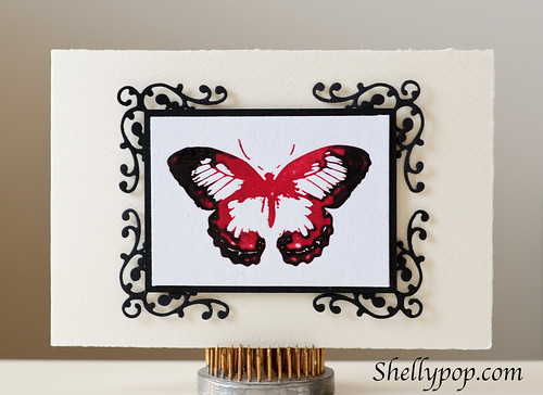 Florish Border & Letterpress Butterfly