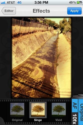Camera Roll-2087
