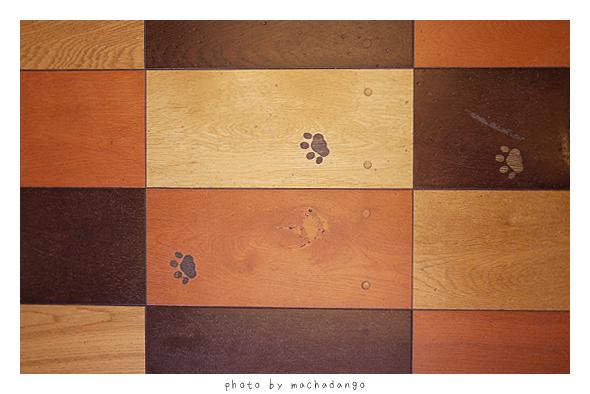 地板上也有腳印