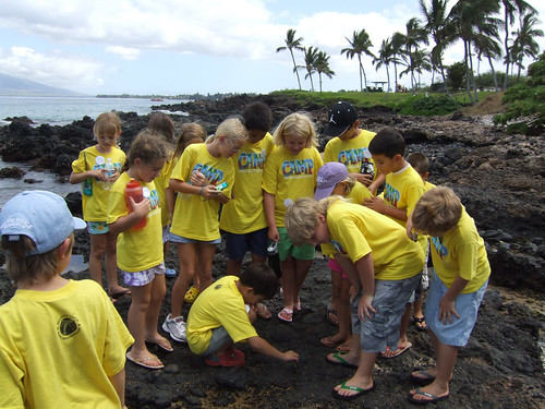 Pacific Whale Foundation - Ocean Camp Summer Session