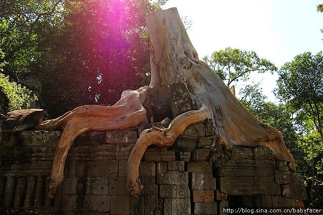 BKK_Angkor 889