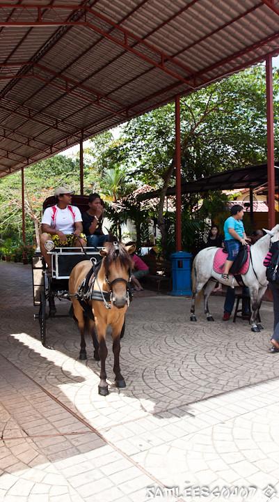 20120408 2012.04.08 Cable Car @ Langkawi-24